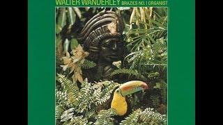 Walter Wanderley - Rainforest (1966) Full Album