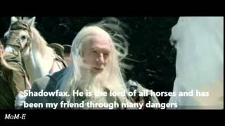 The Lord Of The Rings - Shadowfax Lord Of All Horses Tribute