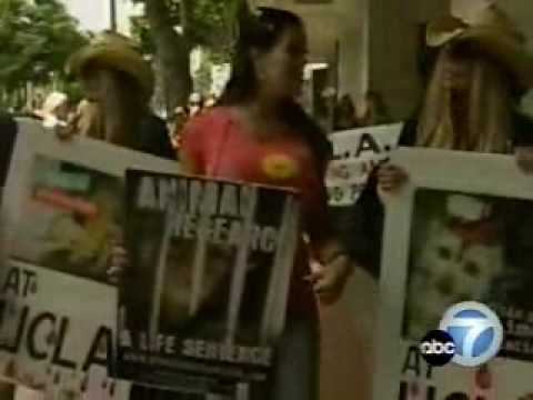 Shane and Sia, the Barbi Protest UCLA's Primate Animal Research Programs Video
