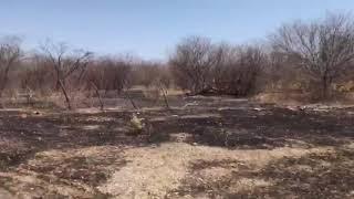 Corpo de Bombeiros combate incêndio no município de Apodi