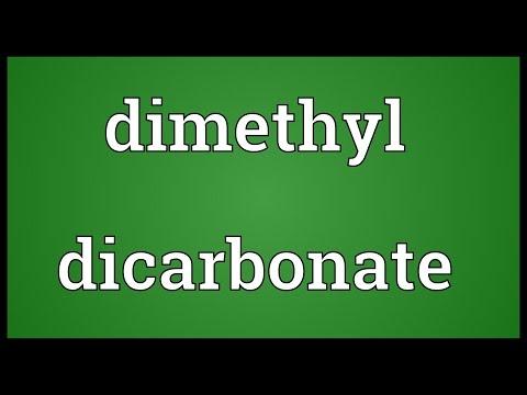 Header of dicarbonate