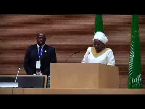 African Union Summit January 2013