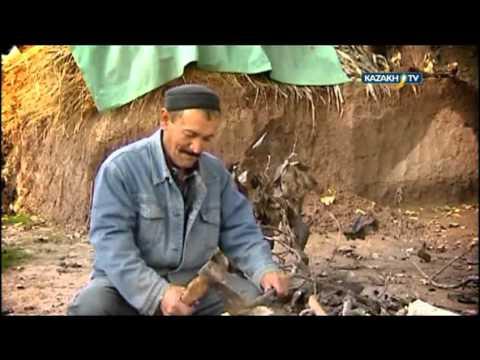 """The Central Asian report"" #7 (04.04.2016)-Kazakh TV-eng"