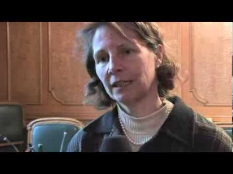 BDP Nationalrätin Brigitta Gadient zur Forderung nach einer PUK, 2010