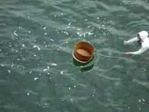 Mikimoto Women Pearl Divers Video