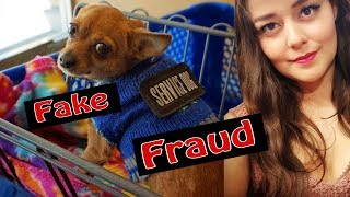 How to Spot a Fake Service Dog