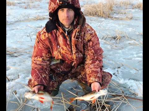 ловля леща в восточной сибири