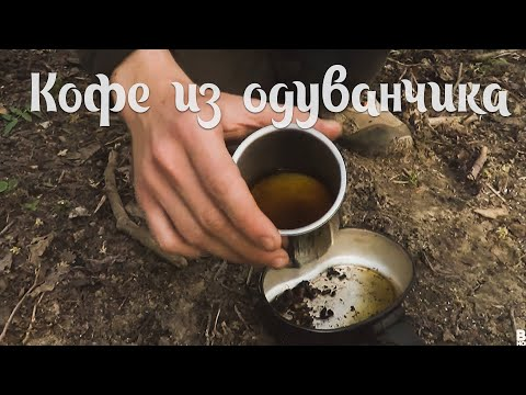 Кофе из корней одуванчика - Dandelion Coffee