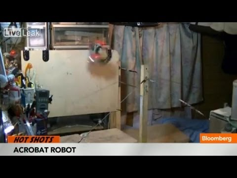 Acrobat Robot Goes Viral With Perfect Jump Landing