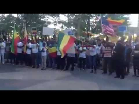 Ethiopia Congressman Mike Coffman (CO) Stands With Ethiopian Protests In Denver, CO