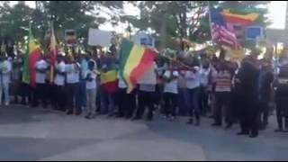 Ethiopia -- Congressman Mike Coffman (CO) stands with Ethiopian Protests in Denver, CO