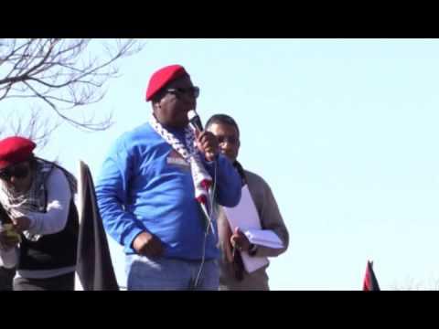 President of EFF Julius Malema at Palestine rally
