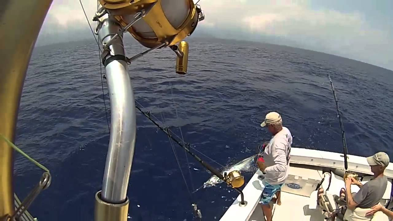 Hula girl sport fishing charters in kona hawaii fishing for Kona sport fishing
