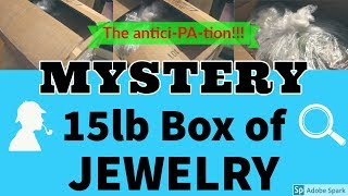15 Pound Box of Goodwill Mystery Jewelry Unboxing Unjarring Opening Silver Gemstones  treasure