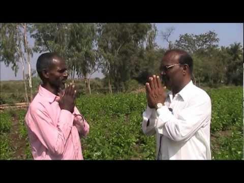 Integrated sericulture farming Kannada BAIF Karnataka