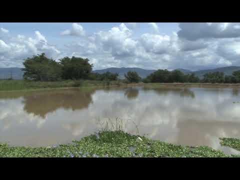 Agua en México: hacia la eficiencia y la protección del medioambiente