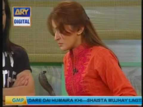 Waqar Zakas 2nd Dare to Dr. Shaista.mp4