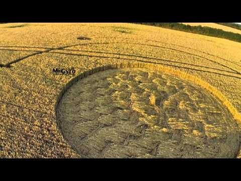 Crop circles 2014   Welsh Way, nr Barnsley, Gloucestershire 22 July