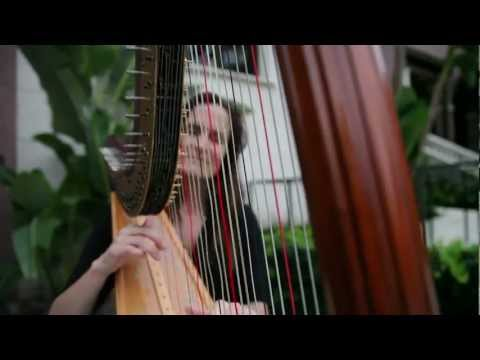 Wedding harpist Orlando FL, by www.PerfectSkyProductions.com