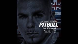 Pitbull Not an Alcoholic