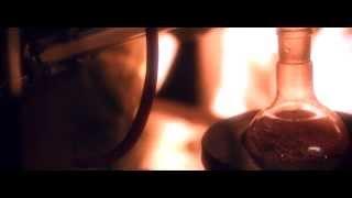 Eskimo Callboy - Final Dance (OFFICIAL VIDEO)
