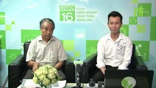 Tư vấn nông nghiệp trực tuyến, sáng 25/06/2019 (từ 08h30 - 10h) | VTC16