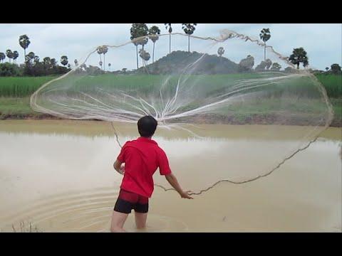 Net Fishing at Kampong Speu province, Cambodia part 01 | Khmer Net fishing 2014