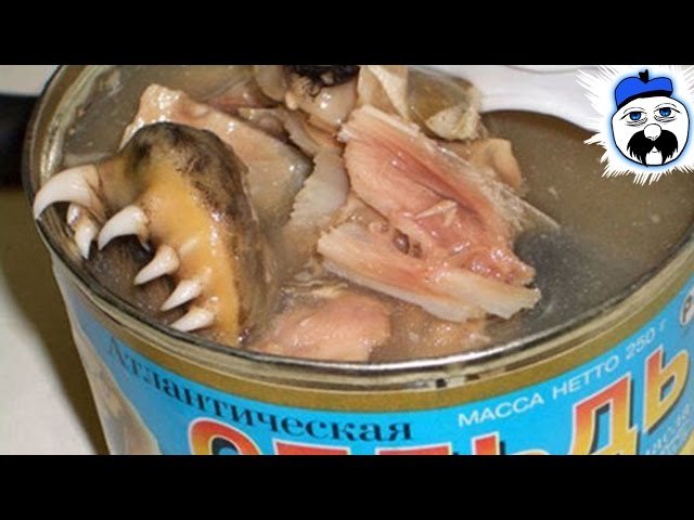 15 Absurd Canned Foods That Shouldn't Exist