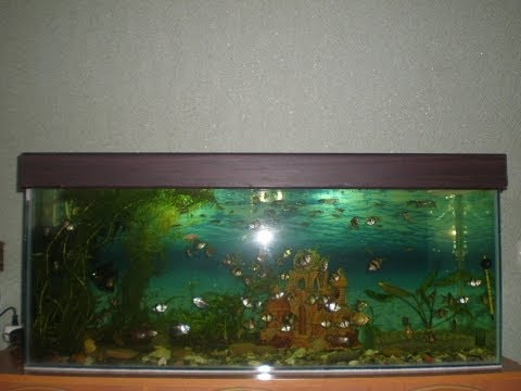 Крышка для аквариума из пвх своими руками