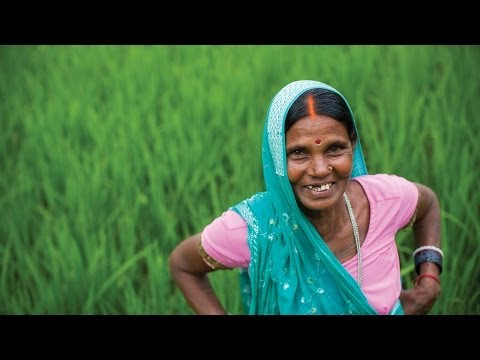 Empowering Women in Agriculture: Rural Women-led Vegetable Farming Project