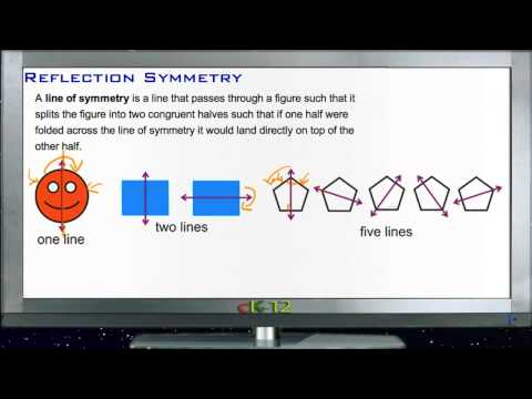 Reflection Symmetry Principles - Basic