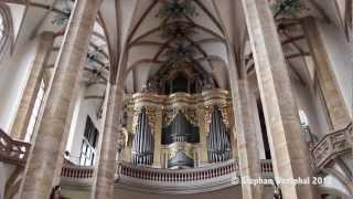 Silbermannorgel Dom Freiberg 720