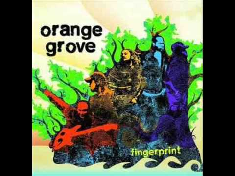 orange grove guys Download and stream orange grove songs and albums, watch videos, see pictures, find tour dates, and keep up with all the news on purevolumecom/orangegrove.