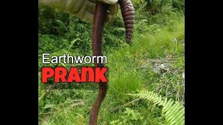 Earthworm prank! WARNING loud screams!