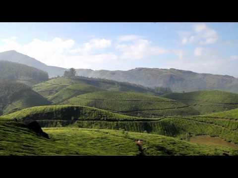 South India Tour | South India Travel | Kerala Backwaters