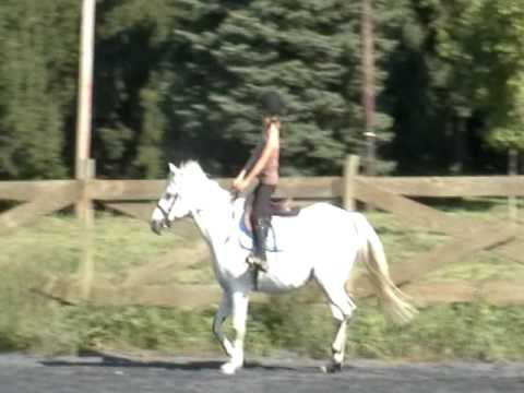 Clip 4 - Lady clearing her lungs,  Bigger trot