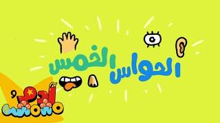 الحواس الخمس مع آدم ومشمش The Five Senses in Arabic with Adam Wa Mishmish (S02E03)