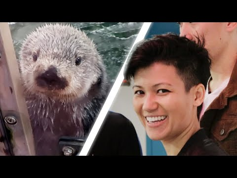 We Followed A Marine Animal Trainer For A Day