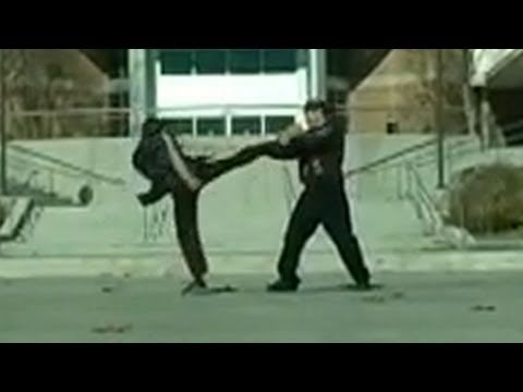 Kung Fu vs Kickboxing Fight Scene Image 1