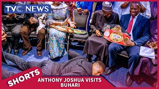 Anthony Joshua prostrates before Buhari