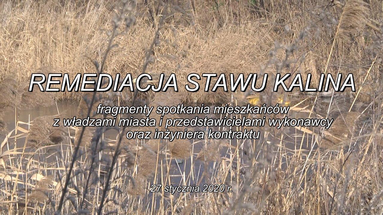 Remediacja Stawu Kalina