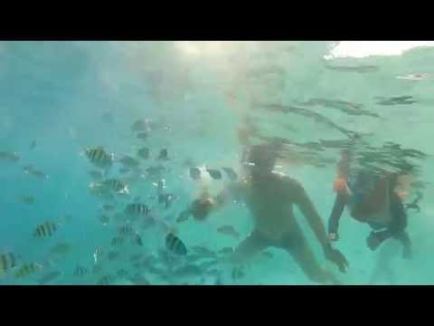 Latihan Snorkeling &amp  Menyelam Bebas, 30 31 Maret'14