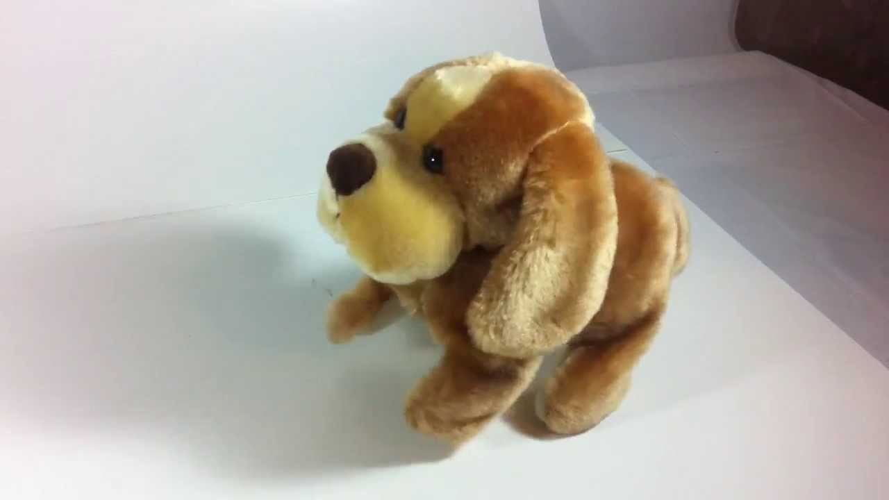 Toy Dog You Can Walk