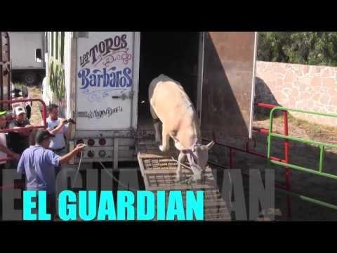 Rancho La Mision Vs Los Guerreros De Oaxaca Tepetlaoxtoc Edo Mex 1 Febrero 2014