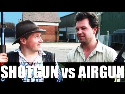 Fieldsports Britain - Airguns vs shotguns on pigeons. big-bore air rifle review. and young shots
