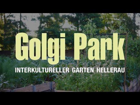 Golgi Park – Interkultureller Garten Hellerau