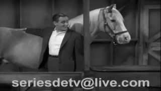 1 ed el caballo parlanchin
