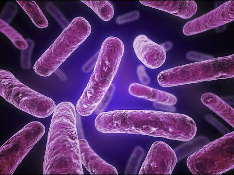 Antibiotics and the Emerging Superbug Threat