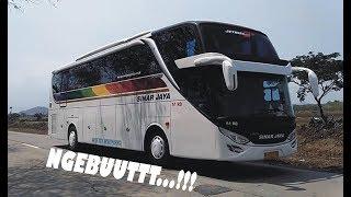 [Bismania] Kompilasi Bus Sinar Jaya Super Ngebut di Jalur Songgom