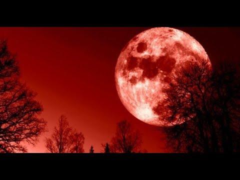 Сегодня можно наблюдать кровавую Луну